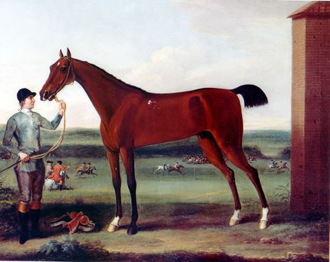 """Lord Portmore's Victorious held by a Groom at Newmarket"""